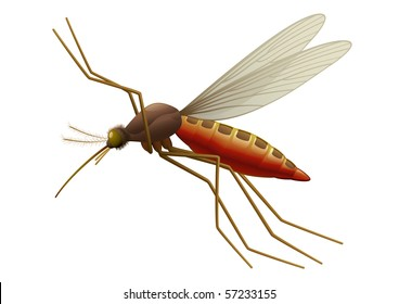 "Flying Mosquito, blood sucking insect.  ""Full compatible. Created with gradients."""