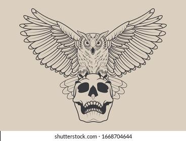 Flying Owl and Skull Tattoo Design Sketch