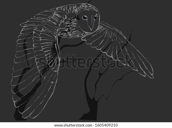 flying-owl-vector-600w-1605409210.jpg