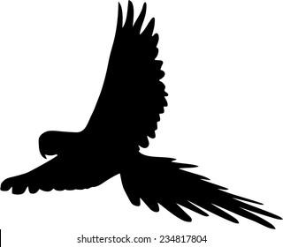 flying parrot silhouette