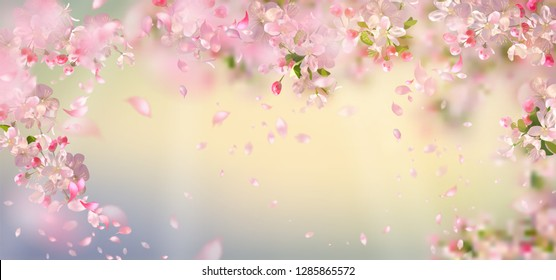 Flying petals on spring background. Flowers and petals in the wind. Vector background with plum or cherry blossom. Hanging flowers