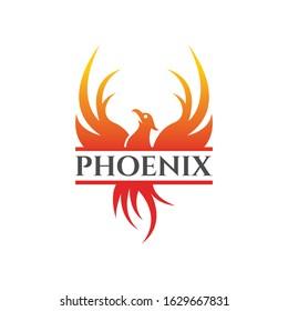 Flying Phoenix Fire Bird abstract Logo design vector template. Upward Dove Eagle Logotype concept icon. Vector high quality design