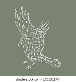 Flying raven. Ornate animal. Harmony and zen. Crescent moon magic symbols. Vector illustration.