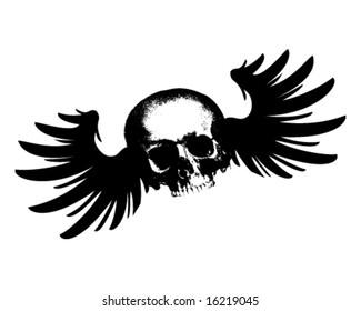 Flying Skull Vector Illustration