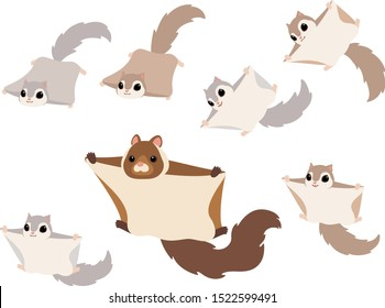 Flying squirrels illustration set (Japanese giant flying squirrel, Japanese lesser flying squirrel, Russian flying squirrel)