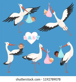 Flying stork baby. Bird delivery newborn cute little childrens vector carry stork characters isolated. Delivery baby, newborn and stork with child illustration