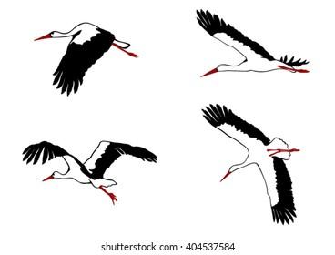 Flying storks set. Vector graphics.