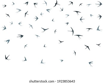 Flying swallow birds silhouettes vector illustration. Nomadic martlets school isolated on white. Free flying swallows line art. Cute birds in sky graphic design. Fauna background.