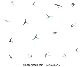 Flying swallow birds silhouettes vector illustration. Migratory martlets school isolated on white. Flapping flying swallows line art. Realistic birds in sky graphic design. Fauna background.