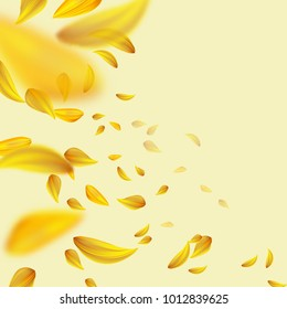 Flying yellow petals.Blurred spring background.Vector illustration