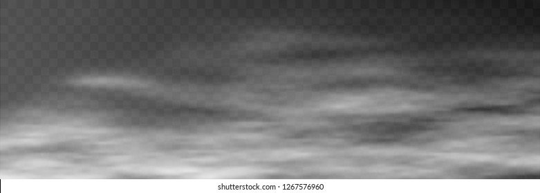 Fog on transparent background, panoramic image, vector background, EPS10