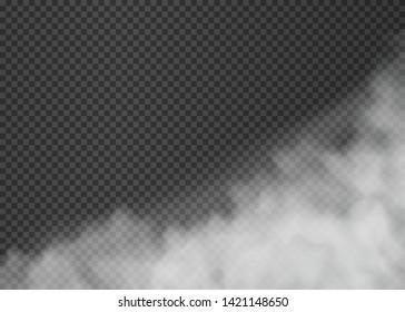 Fog or smoke isolated on transparent background. Vector illustration. Eps 10.