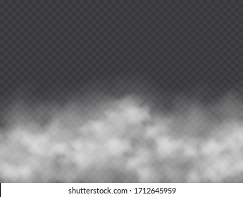 Fog or smoke isolated on transparent background. Realistic smog, haze, mist or cloudiness effect. Vector illustration.