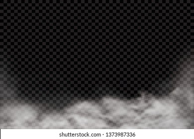 Fog or smoke isolated transparent special effect. White vector cloudiness, mist or smog background. Vector illustration - Vector illustration