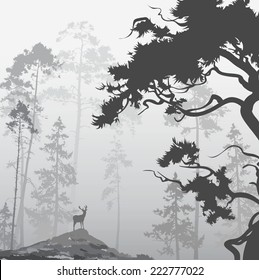 foggy landscape with silhouette of forest, pine trees and deer