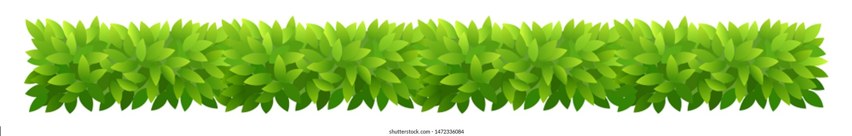 Foliage bush of green leaves. Horizontal rectangular long banner. Green leaves texture. Thick thickets shrubs. For spring and summer design.