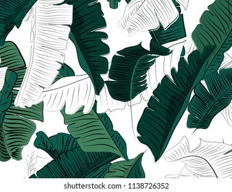 Foliage Jungle pattern, hand drawn outline black ink banana leaves on white background.