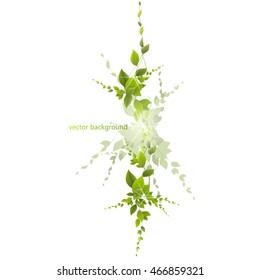 foliage on a white background, climbing plants, vector.   juicy green leaves on a white background