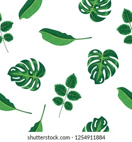 Foliage pattern of green tropical plant, palm and tree on white background. Seamless pattern green leaves monstera tree, natural background. Exotic rainforest plants, flora and nature concept