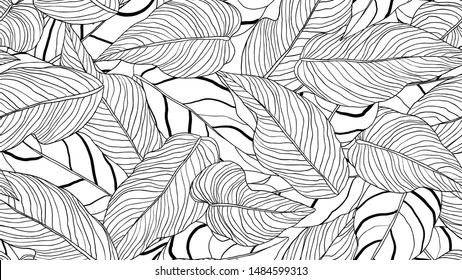 Foliage seamless pattern, long leaves line art ink drawing in black and white