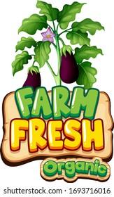 Font design for word fresh farm with fresh eggplants illustration