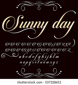 font handwritten  vector Calligraphic vector vintage alphabet,vector,script,font,labels,designers for typeface,grunge,banners with decoration,handcrafted, Hand Lettering named Sunny day