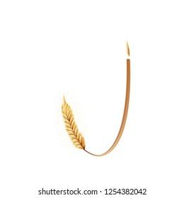 Font J. Paddy rice, malt, barley, wheat design