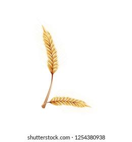 Font L. Paddy rice, malt, barley, wheat design