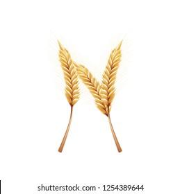 Font N. Paddy rice, malt, barley, wheat design