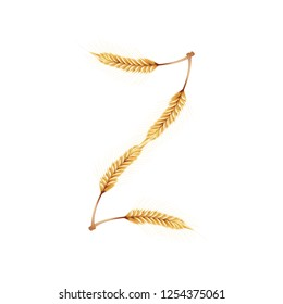 Font Z. Paddy rice, malt, barley, wheat design