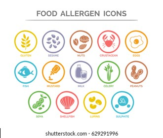 Food allergen icon set. 14 food ingredients that must be declared as allergens in the EU. Useful for restaurants and meals. Colorful silhouette version.