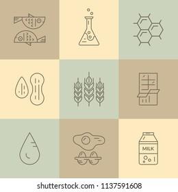 Food allergen icons. Vector line series. Food intolerance symbols for restaurants, farm markets and menu. Special diet illustration.