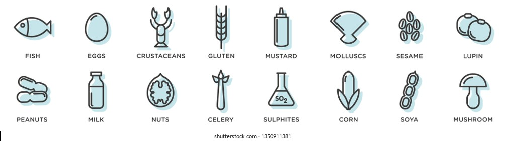 Food allergy icons. Basic allergens and diet line icons vector set. Isolated on white background