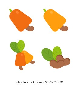 Food - Fruit - Flat Icon Set - Cashew  Isolated on White Background