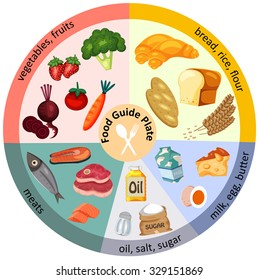 Food Guide Plate for Healthy Living, illustration, vector