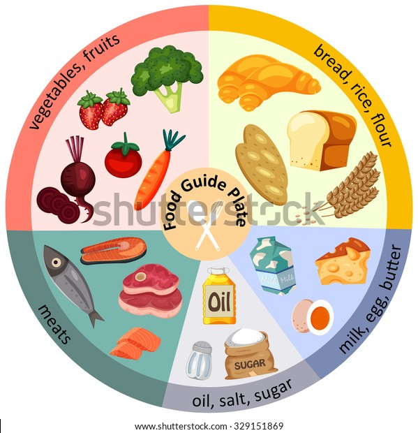 Ketogenic Diet Diagram Stock Illustration Manual Guide