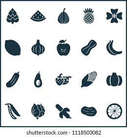 Food icons set with legume, melon, apple and other figs elements. Isolated vector illustration food icons.