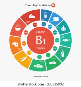 Foods high in vitamin B1. Healthy lifestyle and diet vector illustration infographics with  icons.