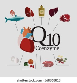 Foods with the highest content of Coenzyme q10: fish, beef and pork meat, nuts, oils. Healthy heart and cardiovascular system. Basics of healthy nutrition. Light background.
