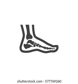 Foot anatomy. Single flat icon on white background. Vector illustration.