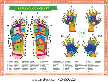 Foot and Hand reflexology chart with accurate description of the corresponding internal and body parts. Vector illustration over white background, isolated.