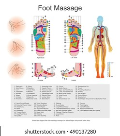 Foot Massage. While various types of reflexology related massage styles focus on the feet, massage of the soles of the feet is often performed purely for relaxation or recreation. Illustration vector.