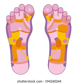 Foot reflexology illustration with different pink and orange colors concerning the corresponding internal organs and body parts. Vector illustration over white background.