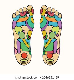 Foot reflexology scheme with colorful zones, hand drawn doodle, sketch in pop art style, color medical vector illustration