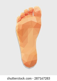 foot right leg bottom view low poly polygon.