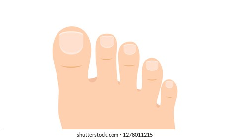Foot thumb cartoon vector. toe vector. wallpaper. free space for text. copy space.