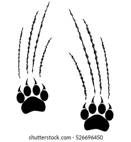Footprints of a big cat. Panther or tiger traces. Vector