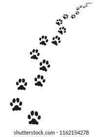 Footprints of dog, turn right