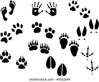 Footprints vector set