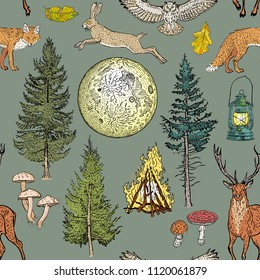 Forest adventure magic seamless pattern: bonfire, camping lamp, full moon, spruce, fir tree, mushrooms, fox, hare, deer, owl. Khaki, green, beige, brown, yellow, orange nature colors.